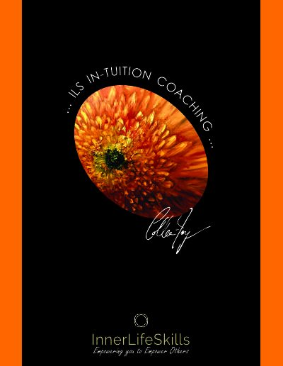ILS Intuition Coaching Course