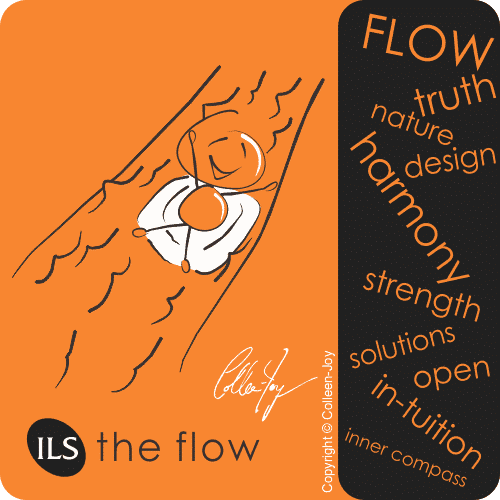 Learn the intuitive flow