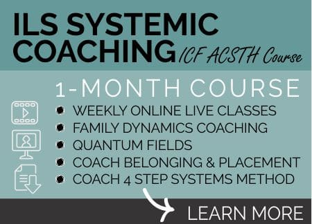 ILS SYSTEMIC COACHING COURSE learn more